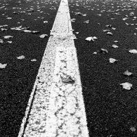 L'autoroute de la nature, un concept ... wallon !